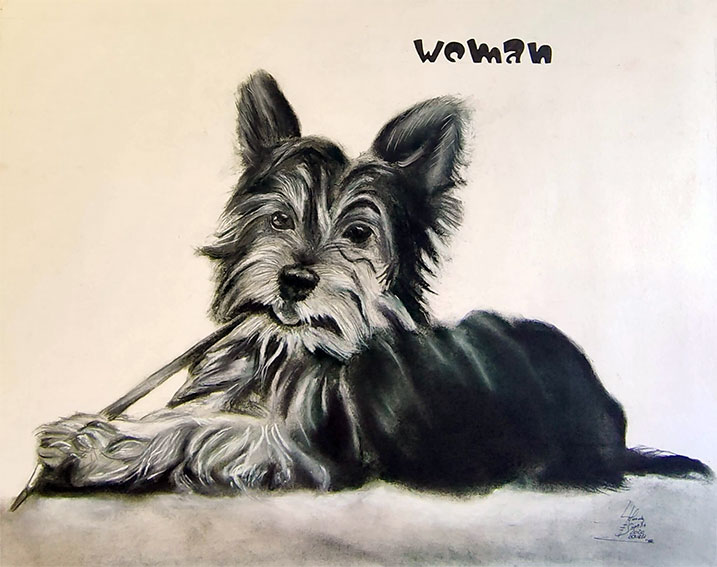 Encargo de retrato de mascota a carboncillo